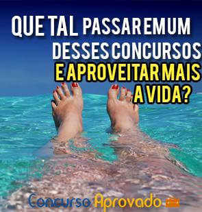 Melhores Cargos de Concursos de todo o Brasil (Melhores Concursos Públicos do País)